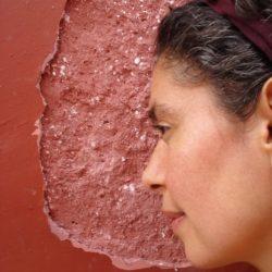 Diana V. Almeida